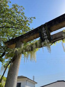 奈加美神社‗鳥居